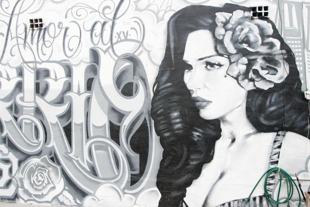 Mural on the outside of Por Vida